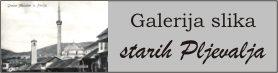 Galerija slika stara Pljevlja